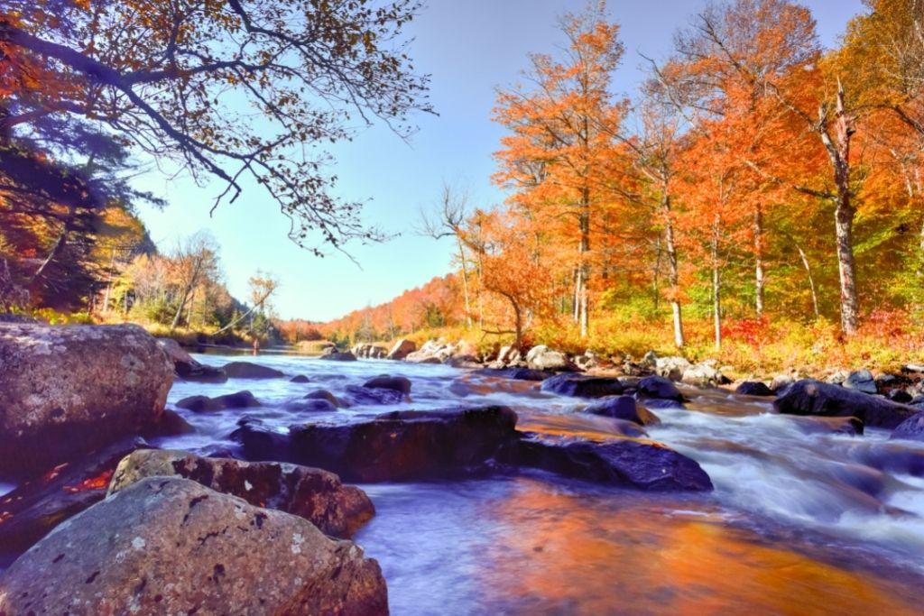 Fall foliage in the Adirondacks in New York
