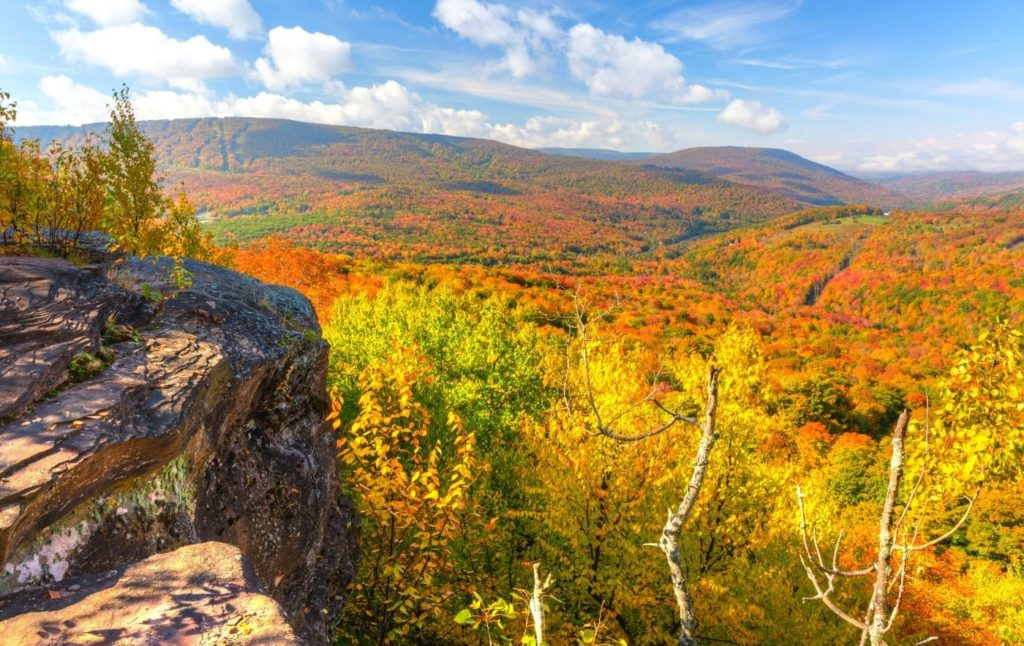 View of vibrant fall foliage from the top of a mountain in the Catskils.