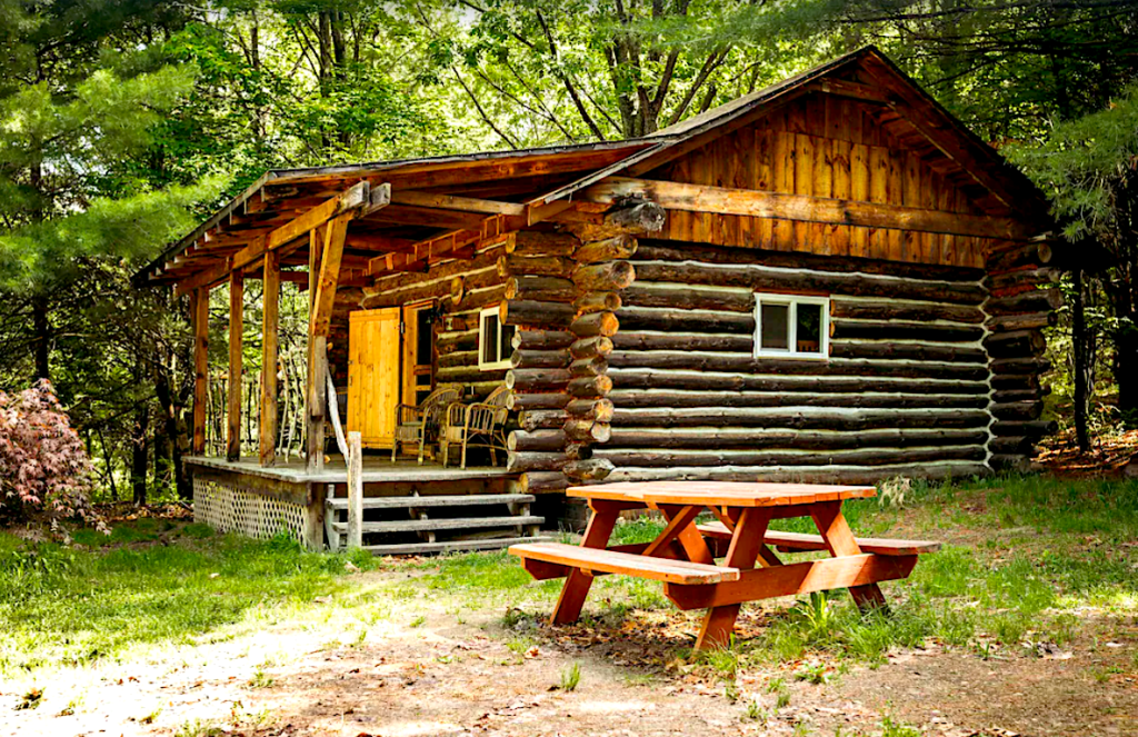 Rustic Ridge cabin near Keuka Lake.
